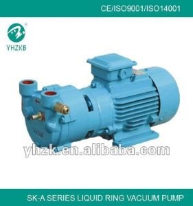 Directly Connectedsingle Stage Liquid Ring Vacuum Pump for Extrusion Line pictures & photos