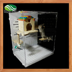 Ecological Board and Acrylic Cage with Decorations for Squirrel Totoro Small Pet Villa Cabinet pictures & photos