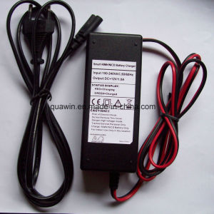 12V 1AMP NiMH NiCd Battery IEC C8 Type Charger pictures & photos