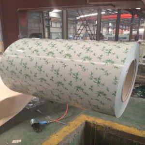 PPGI Prepainted Galvanized Steel Coil Wood Grain PPGI Coil Sheet pictures & photos
