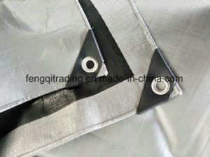 Scaffolding Cover Sheet 3X3 Mesh Transparent Scaffolding Tarpaulin Leno Tarp Scaffolding Sheet pictures & photos