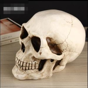 Creative Skull Heads Design Ceramic Money Bank Coin Box pictures & photos