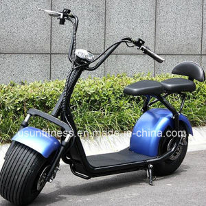 Fat Tire Two Wheel Electric Scooter with Double Seats pictures & photos