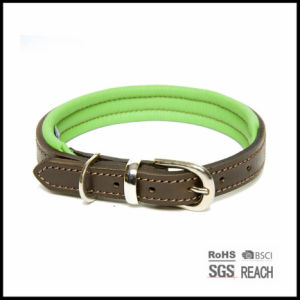 Pet Supply Products Durable Strong Leather Dog Collar with EVA Padding pictures & photos