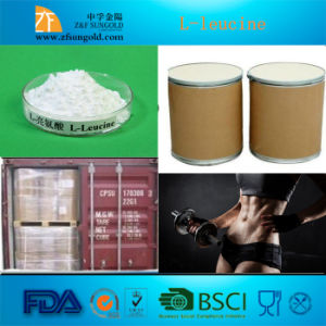 High Quality Nutrition Enhancer Amino Acid L-Leucine