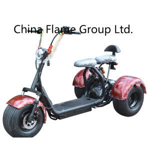 1000W60V Front Back Suspension New Harley 3 Wheel Scooter pictures & photos