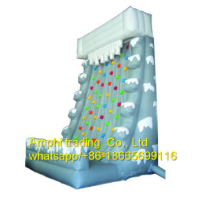 Games Type PVC Material Inflatable Speed Climbing