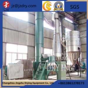 Large Xsg Series of Spin Flash Drying Equipment pictures & photos