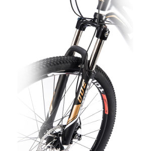 High Efficient Mountain Bike/No Maintain Mountain Bicycle pictures & photos