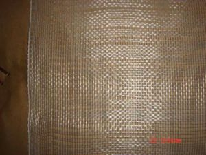 Fiberglass Plain Woven Mesh, 20X10, 45G/M2, for Roofing or Pipe Wrapping pictures & photos