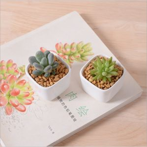 Creative Desktop Decoration Mini White Ceramic Flower Pot pictures & photos