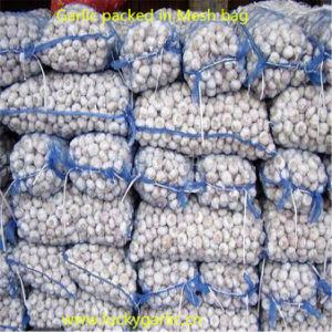 2017 New Crop Pure White Fresh Garlic pictures & photos