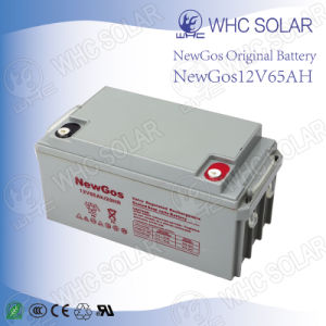 Deep Cycle Solar Battery 12V65ah Lead Acid Battery pictures & photos