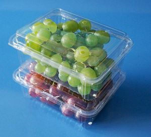 disposable clamshells blister fruit packaging tray container for grape tomatoes pictures & photos
