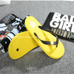 Fashion Slippers for Outdoor Beach pictures & photos