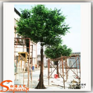 Fiberglass Artificial Ficus Tree for Restaurant Decoration pictures & photos