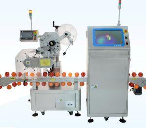 Automatic Kivi Labeling Machine pictures & photos
