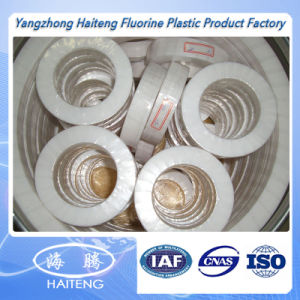 Haiteng Customized Oil Seal Teflon Seal pictures & photos