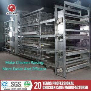 Poultry Farm Equipment H Type Chicken Broiler Bird Cage pictures & photos