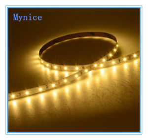 IP65 Sillicon Tube LED Flexible Strip SMD3528 60LEDs/M LED Light Bar 5m/Reel Outdoor LED Rope Light with Ce RoHS UL Warranty 3years pictures & photos