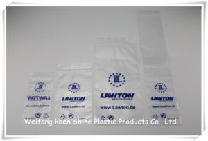 Bags Plastic 2016 Hot Selling Good Quality Sample Cheap Custom Plastic Zip Lock Bags pictures & photos