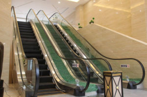 Toughened and Laminated Elevator Glass pictures & photos