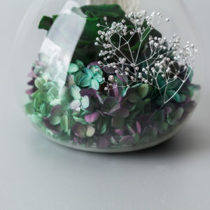 Promotion Preserved Flowers for Creative Gift pictures & photos