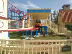 Unique Design Small Area Big Income Roller Coaster Outdoor Playground Equipment pictures & photos