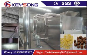 Mesh Belt Tunnel Puff Food Corn Flakes Dryer pictures & photos
