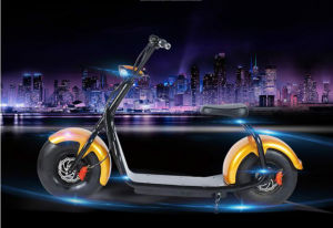 2016 Hot Sell Electronic Citycoco Scooter