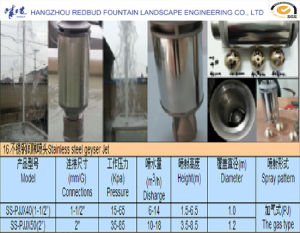 Geyser Water Founatin Nozzle and Jet Nozzle in Stainless Steel pictures & photos