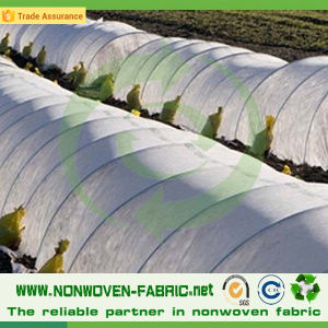 Biodegradable Anti-UV Nonwoven Fabric for Agriculture Cover pictures & photos