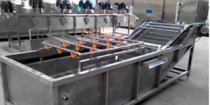 Full Stainless Steel Vegetable Cleaner Machine pictures & photos