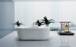 Without Pillow Ellipse Massage Bathtub (BA-N245) pictures & photos