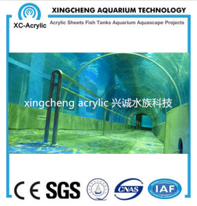 100% Lucite Material Acrylic Tunnel of Oceanarium Project pictures & photos