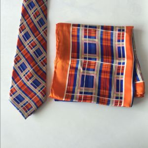 Fashion Square Check Design Silk Neckties and Scarves pictures & photos