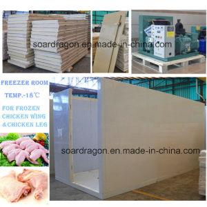 Single Door Standard Freezer Room for Chicken Temperature -18degree C pictures & photos
