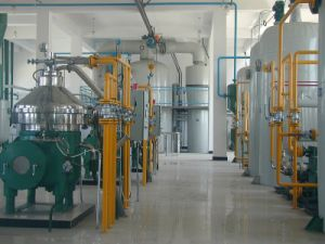 China Hot-Sale Walnut Oil Refinery pictures & photos
