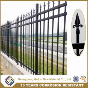 High Quality Iron Fence/Iron Guardrail/ Garden Fence pictures & photos