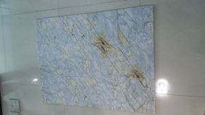Ariston Gold Stone Granite for Countertops, Decoration pictures & photos