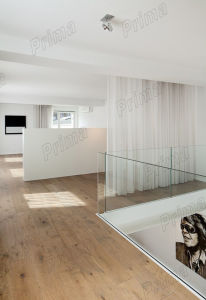 Invisiable Bottom Frame Glass Railing/ Frameless Glass Balustrade pictures & photos