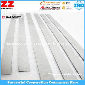 Carbide Flats for Crushing Stones pictures & photos