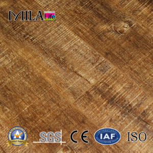Eir Laminate Flooring with V-Groove, SGS, CE Approved (B003#)