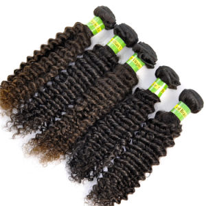 Hot Sales Brazilian Virgin Hair Extensions Kinky Curly pictures & photos
