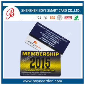 Loco and Hico Magnetic Stripe PVC Card pictures & photos