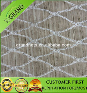 Anti Bird Net Bird Netting for Sale Bird Net Trap pictures & photos