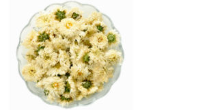 White Chrysanthemum (Gong Ju or Tribute chrysanthemum)