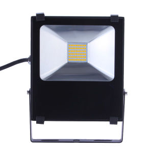 30W Flood Light with Slim Housing pictures & photos
