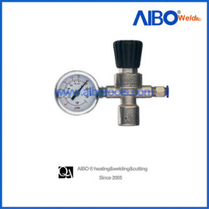 Industrial Pressure Regulator with One Gauge (2W16-1010) pictures & photos