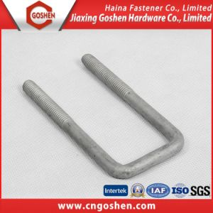 Acceptance Customized Steel Bolt Shape with U pictures & photos